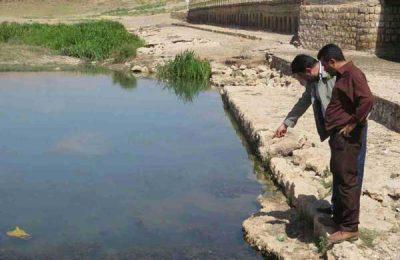 تلف شدن ماهیان رودخانه خره برداشان
