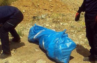 جزئیات قتل زن 65 ساله بوکانی