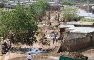 از ابتدای سال ۹۷ در سطح شهرستان پیرانشهر حدود 51 میلیارد تومان خسارت به بخش محصولات کشاورزی وارد شده است