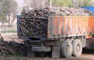 توقیف 15 تن چوب قاچاق در بوکان